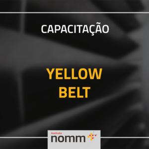 Yellow Belt - Online